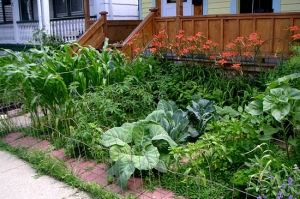 Who needs grass anyway? Edible lawns, ftw!